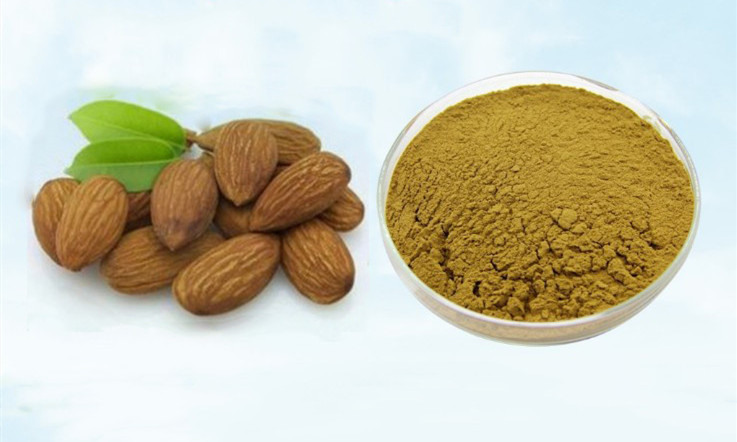 Vitamin B17 Supply Pure Bitter Apricot Seed Extract 30:1 Amygdalin, Anti-aging Anti-cancer, Antitumor,Almond Apricot Kernel