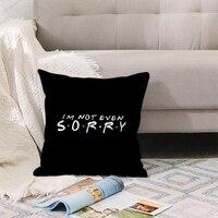 f r i e n d s cushion cover