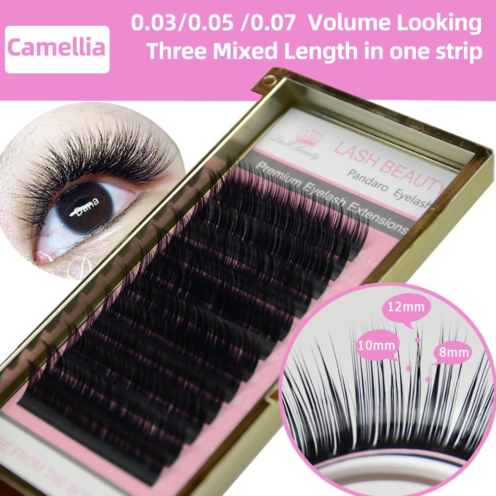Camellia Eyelash Pandora 3D-6D 0.07 Volume Eyelash Extensions Mixed Length in One Lash Strip Fancy Packing Lash Box(China)