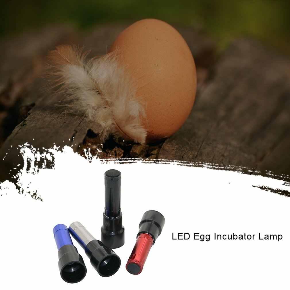 Lampu Penetas Telur Cahaya Khusus Telur Dingin Senter Ayam Bebek Angsa Burung Merpati Burung Putih Telur