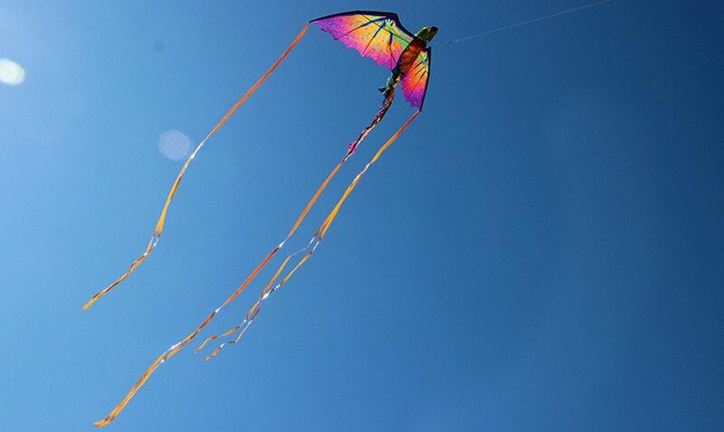 3D pterozaur kameleon latawiec zwierząt dinozaur latawiec długi tren pojedyncza głowica latawiec Outdoor Sports Surf narzędziami do puszczania latawca dzieci prezenty
