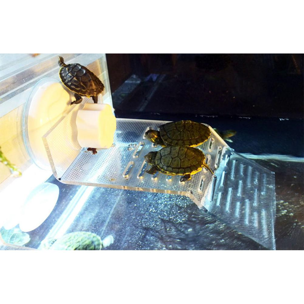 Transparent Turtle Crawler Rooftop Terrace Turtle Swimming Pool Float Island Dorsal Bask Platform Decoration Aquarium Accessory