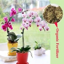 6L Phalaenopsis Sphagnum Moss Garden Supplies Moisturizing Nutrition Organic Fertilizer For Phalaenopsis Orchid Musgo Sphagnum