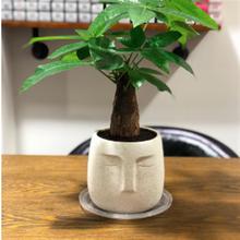 Цементная настольная декоративная садовая ваза глина для рукоделия