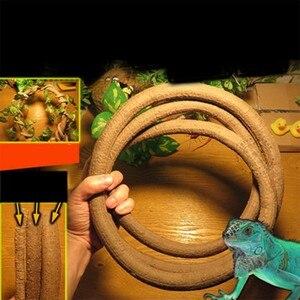 Pet Toy Reptiles Amphibian Sup