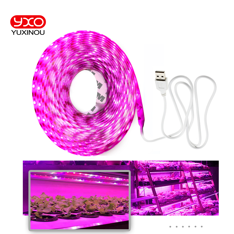 Full Spectrum LED Grow Lights USB LED Strip Lights 370-780nm 2835 Chip LED Grow Lamps 0.5m 1m 2m 3m for Indoor Plants growing(China)