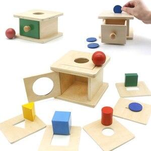 Multi Shape Sorting Box Puzzle