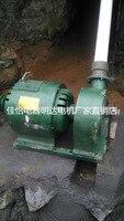 All copper 220V 600W small hydro permanent magnet brushless alternator home horizontal impact