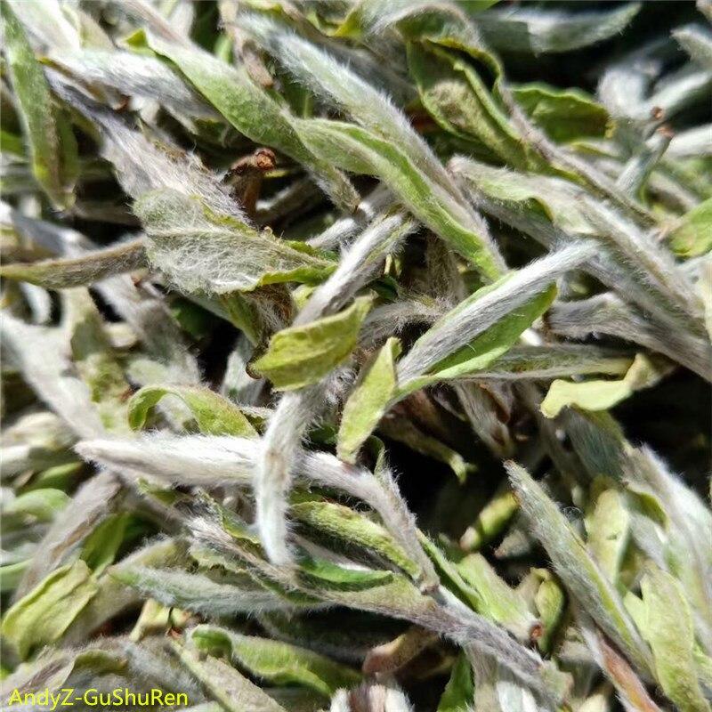 2019 7A Special Grade  Chinese White Tea Silver Needle Premium Bai Hao Yin Zhen Oolong Tea Kungfu Health Tea