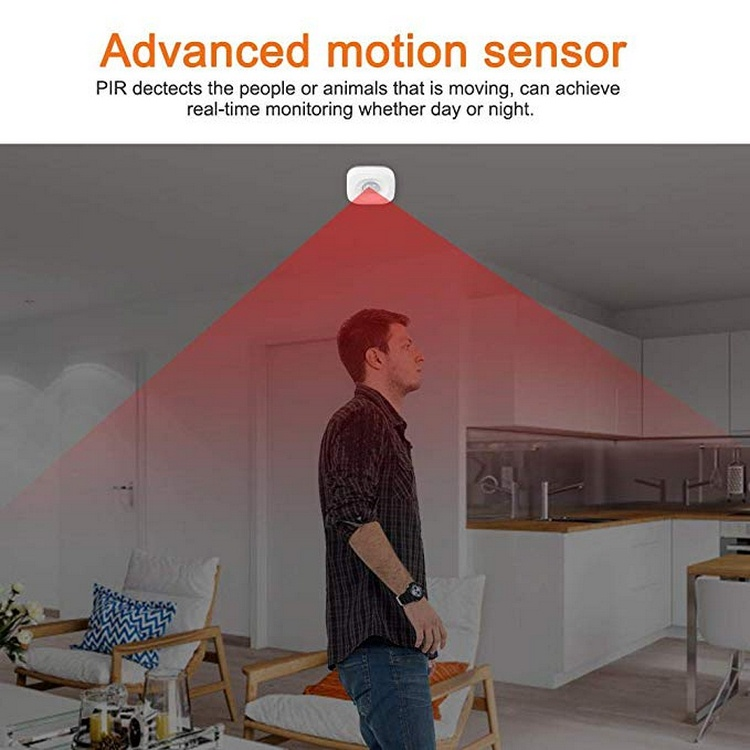 Pir Motion Sensor Anti-theft Remote Contro Real-time Monitoring In Day Or Night Dp-wp001 Pir Motion Sensor Security