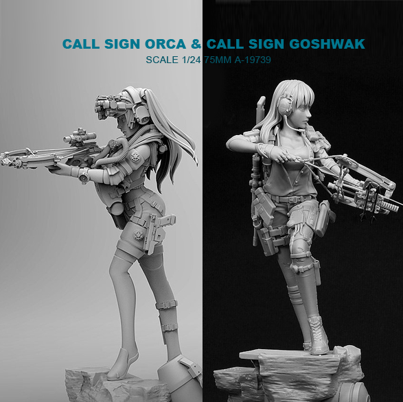 1/24 Resin Kits Killer Whale Beauty Shooter + Modern Female Archer Resin Soldier (2piece)  (75mm) A-19739