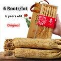 6 raízes/lote Seco de Raiz de Ginseng, 100% Original e Natural Puro, Sem pesticidas, alta qualidade Suplemento Nutritivo, Aumentar A Imunidade