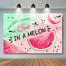Watermelon Theme Birthday Party Banner Sweetie One in a Melon Birthday Backdrop Summer Fruit 1st Birthday Party Decoration