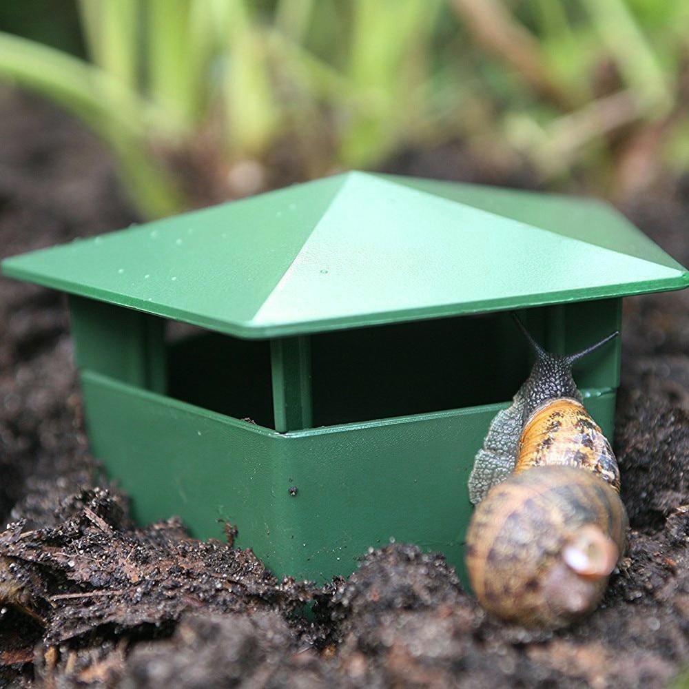 Slug and Snail Traps