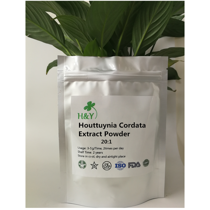 150-1000g Free Shipping Factory Supply Houttuynia Cordata Extract20:1 Powder