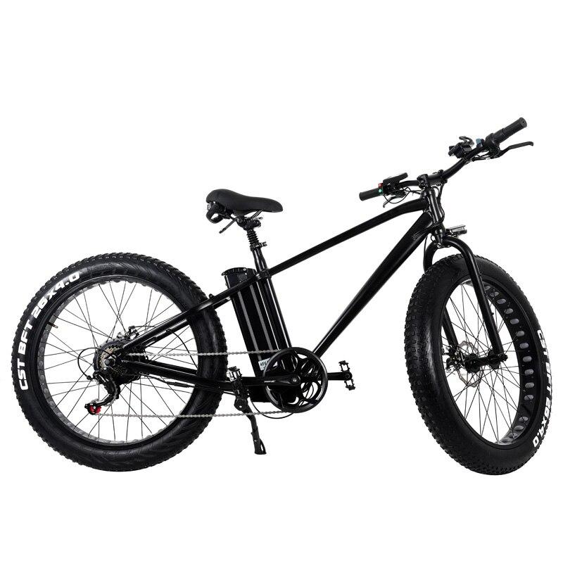 MXUS XF 36V 250W 48V 500W Brushless Hub Motor Electric Bicycle Front Rear Wheel