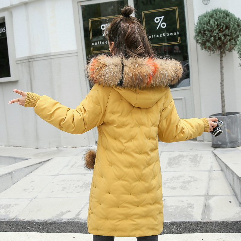 Women&39;s Jacket Large Size 2019 Female Long Hooded Fur Collar Parka_B6_17