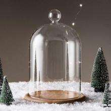 Домашний декор стеклянные вазы цветок дисплей Cloche колокольчик купольная бессмысловая сохранение+ деревянная основа Everlasting цветок стеклянная крышка