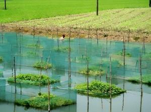 Рыболовная сеть в аквариумной клетке рыболовная сеть в лошадиной клетке рыболовная сетка клетка для ловли угрей настраиваемая рыболовная ...
