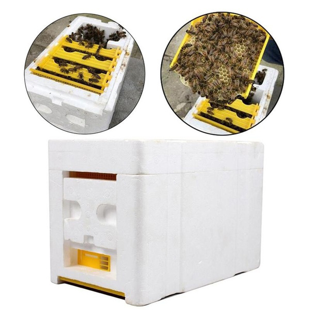 1pc Bee Hive Beekeeping King Box Pollination Box Foam Frames Beekeeping Tool Kit For Farm Garden Beeworking Pollination