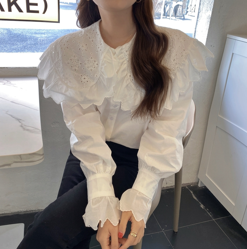 H8ce2f608d0534dbe82670f4e4c94cc86a - Spring / Autumn Hollow Out Big Lapel Collar Puff Sleeves Loose Solid Blouse