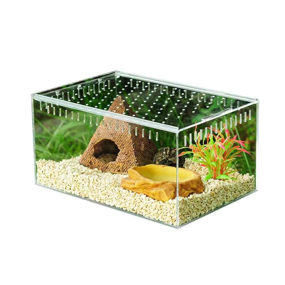 Reptil Pembiakan Kotak Akrilik Transparan Penutup Geser Reptil Tangki Serangga Laba-laba Kura-kura Kadal Makan Kotak Terarium