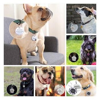 Dog ID Collar 5