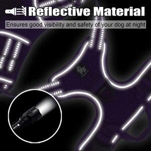 Image 5 - Truelove كلب تسخير المقود للحيوانات الأليفة مجموعة كبيرة الكلاب المتوسطة الصغيرة الياقات ويسخر للكلاب سرج الكلاب المصنوع من النايلون وتسخير