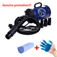 For Sell New Brand Cheap Dog Grooming Dryer Cheap Pet Hair Dryer Blower 220v/110v 2400w Eu Plug Pink Blue Color