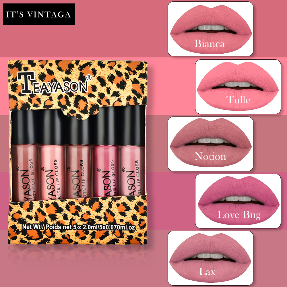 5Pcs/Set Waterproof Lipstick Sexy Vampire Lip Stick Matte Velvet Lipsticks Lips Makeup Cosmetics Labiales Matte Larga Duracion 5