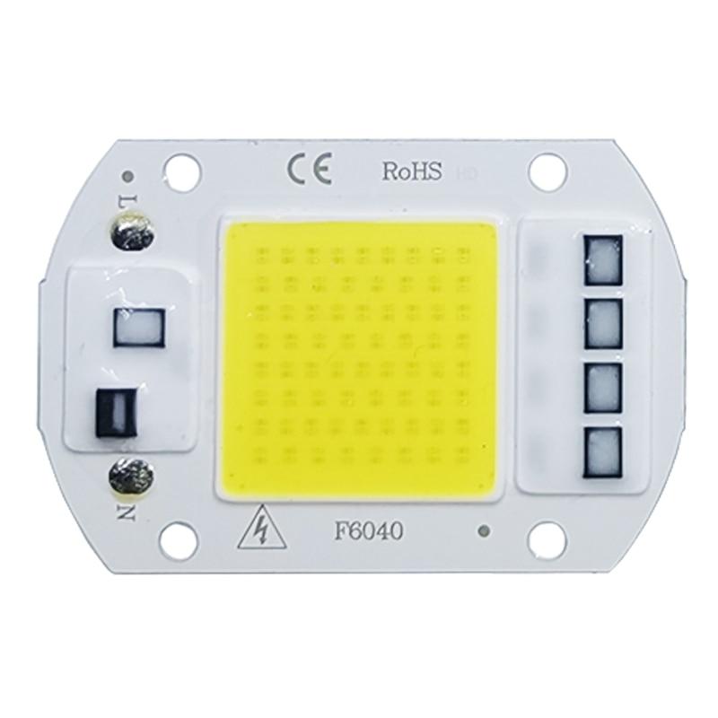 COB LED Lamp Chip AC 220V LED Bulb 10W 20W 30W 50W IP65 High Power Smart IC DIY Flood Light Bulb Spotlight Outdoor Chip Lamp