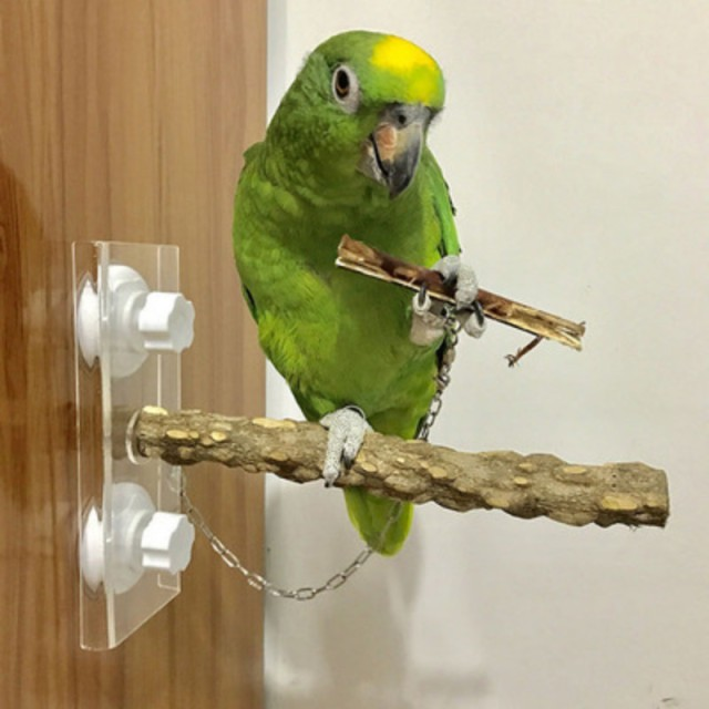 Wooden Parrot Stand Stick Rack Perch For Birds Pet Parrot Toy Bird Cage Accessories Parrot Standing Rack Cockatiels Climbing Toy 2