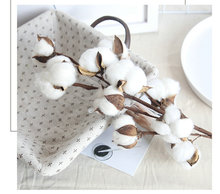 9 heads dried cotton stems natural artificial flower  decorative Wedding  home party living room long branch 1 branch living room decoraton artificial sunflower