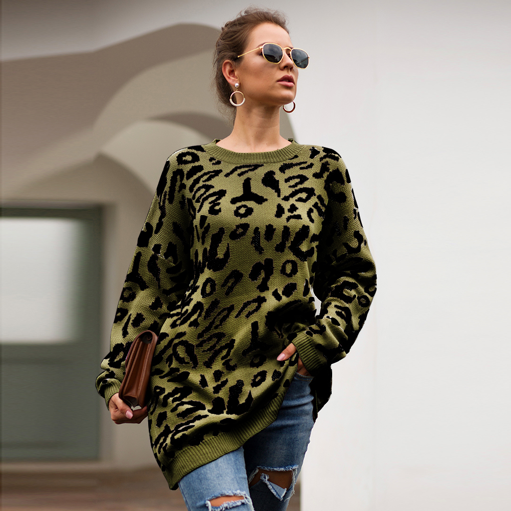 Dilusoo Leopard Print Winter Knitted Sweater Women O-neck Long Sleeve Loose Sweaters Female 19 Casual Autumn Overalls Sweaters 12