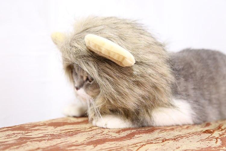 Купить лев превращается в хэллоуин день святого валентина животное
