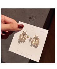 Super flash 925 silver needle multi-function five-pointed star asymmetric web celebrity earrings temperament style