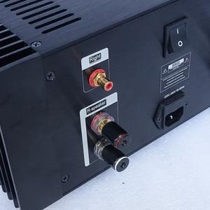 Image 4 - WEILIANG الصوت فئة 24 واط هود 1969 مكبر كهربائي