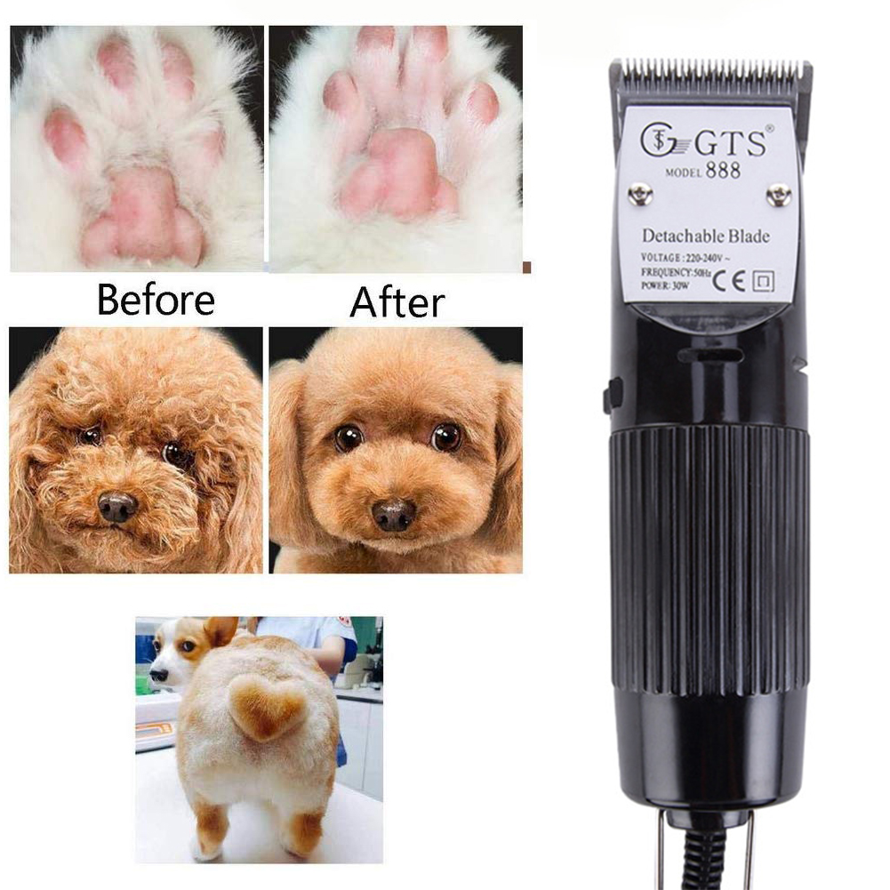 Aparadores de pelo de cachorro