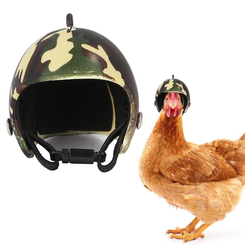 Pet Chicken Bird Helmet Small Pet Hard Hat Funny Chicken Helmet Hen Hard Bird Hat Headgear Protective Pet Helmet Pet Supplies