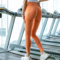 ORANGE-Seamless Yoga Leggings Women Sportwear