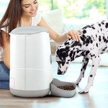 Small pets dog cat food feeder 3.7L capacity App controlled SmartLife automatic pet dog cat food dispenser