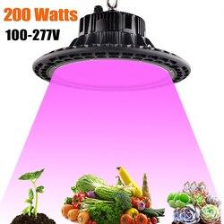 100W 150W 200W lampa ledowa do hodowli roślin AC85 ~ 265V pełne spektrum oświetlenie do uprawy roślin dla rośliny doniczkowe kwitnące rosną namiot wewnętrzny hydroponiczny