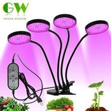 Phytolampères à spectre complet DC5V USB LED poussent la lumière avec minuterie 15W 30W 45W 60W attache de bureau Phyto lampes pour plantes fleurs poussent boîte