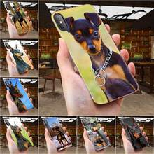 Soft TPU Popular Hot German Pinscher Dog For Huawei Honor Mate 7 7A 8 9 10 20 V8 V9 V10 V30 P40 G Lite Play Mini Pro P Smart(China)