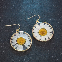 Fashion Transparent Dried Flower Elegant Earrings For Women 2019 Resin Daisy Drop Earring Bohemian Geometric Gold Jewelry(China)