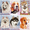 AZQSD Unframe DIY Oil Painting By Numbers Set Animal Home Decoration Coloring By Numbers Kits Dog Acrylic Paint Unique Gift