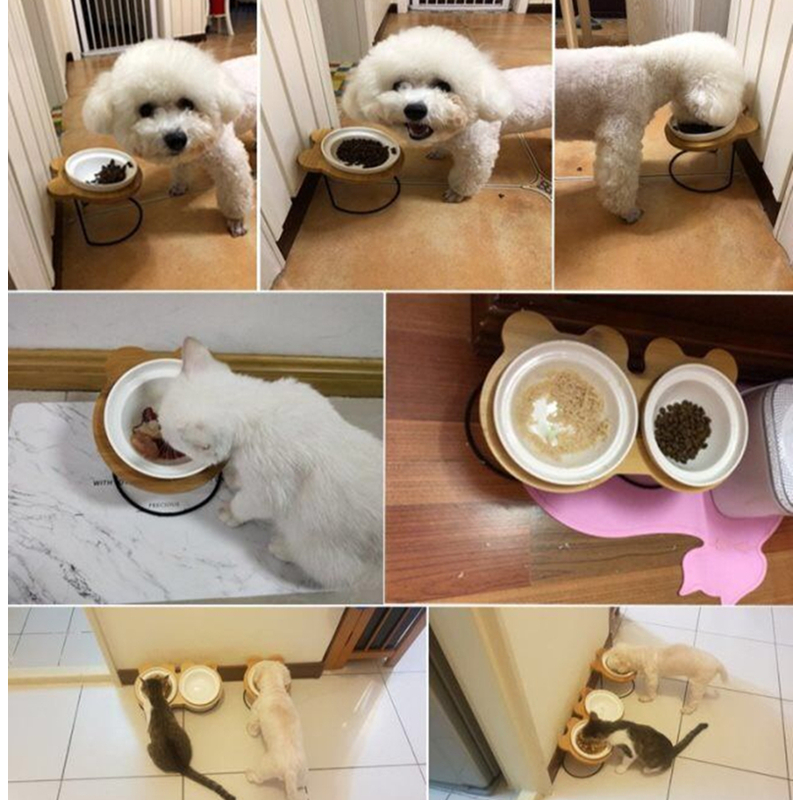 New High end Pet Bowl Bamboo Shelf Ceramic Feeding and Drinking Bowls for Dogs and Cats Pet Feeder Accessories in Dog Feeding from Home Garden