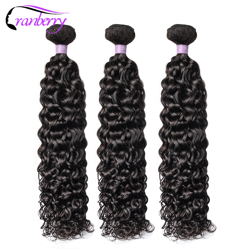 CRANBERRY Hair Brazilian Hair Water Wave Bundles With Closure 100% Remy Hair Bundles With Closure Free Middle Three Part