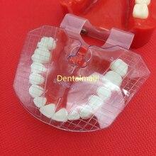 Стоматологические лабораторные инструменты Стоматологическая направляющая пластина расположение зубов на протез работы