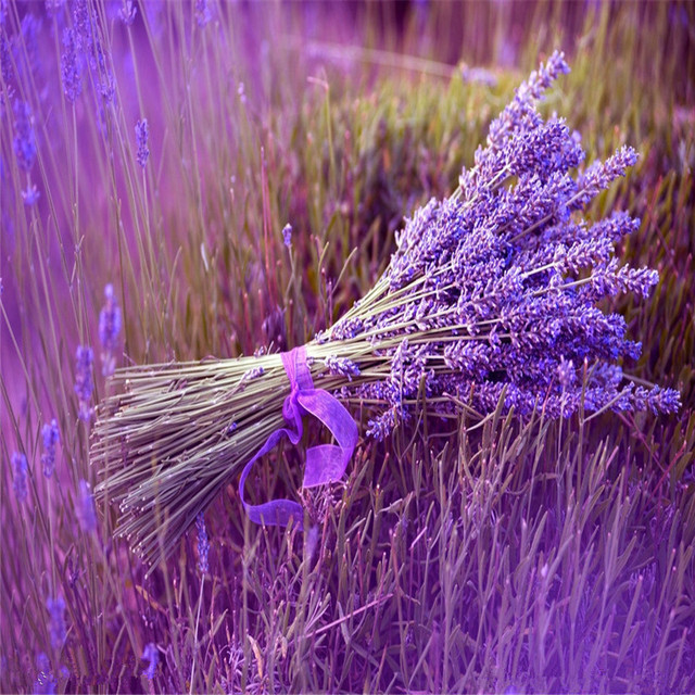 Plant Bath Salts 300Pcs Italian Lavender Flower Essence AN-ZZ32-300 3